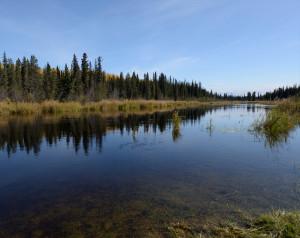 Swanson River near Kenai, AK.